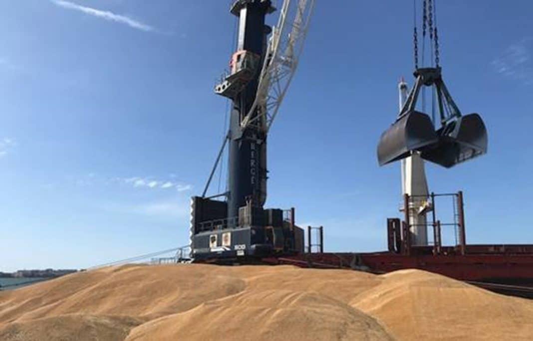 berge carga 27000 toneladas de trigo duro en Cádiz para tunez min