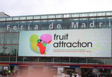 fruit attraction1