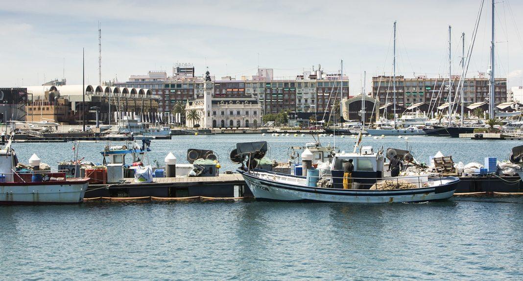Newsletter puerto Valencia min