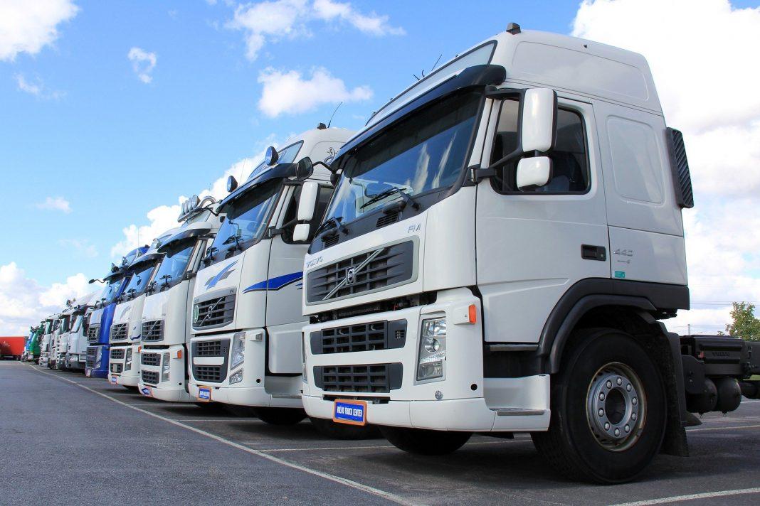 camiones aparcados Fvet