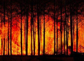 quemando el futuro min
